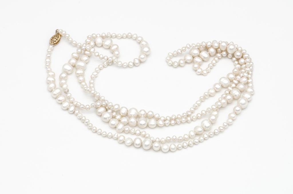 Brozas melnās pērles