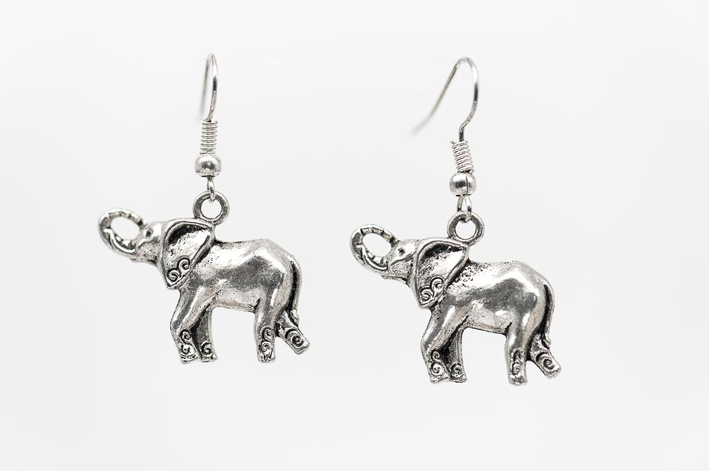 Ziloņi ausīs- viss ir iespējams