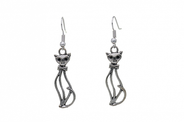Homeowners earrings